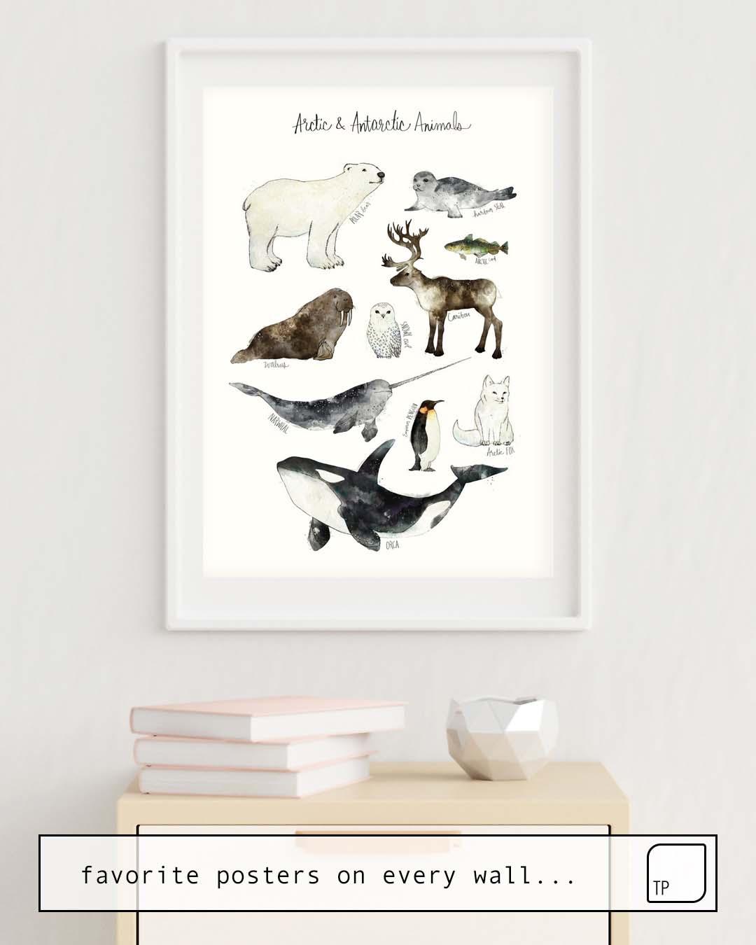 Das Bild zeigt ein Einrichtungsbeispiel mit dem Motiv ARCTIC & ANTARCTIC ANIMALS von Amy Hamilton als Wandbild