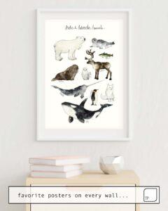 La photo montre un exemple d'ameublement avec le motif ARCTIC & ANTARCTIC ANIMALS par Amy Hamilton comme peinture murale