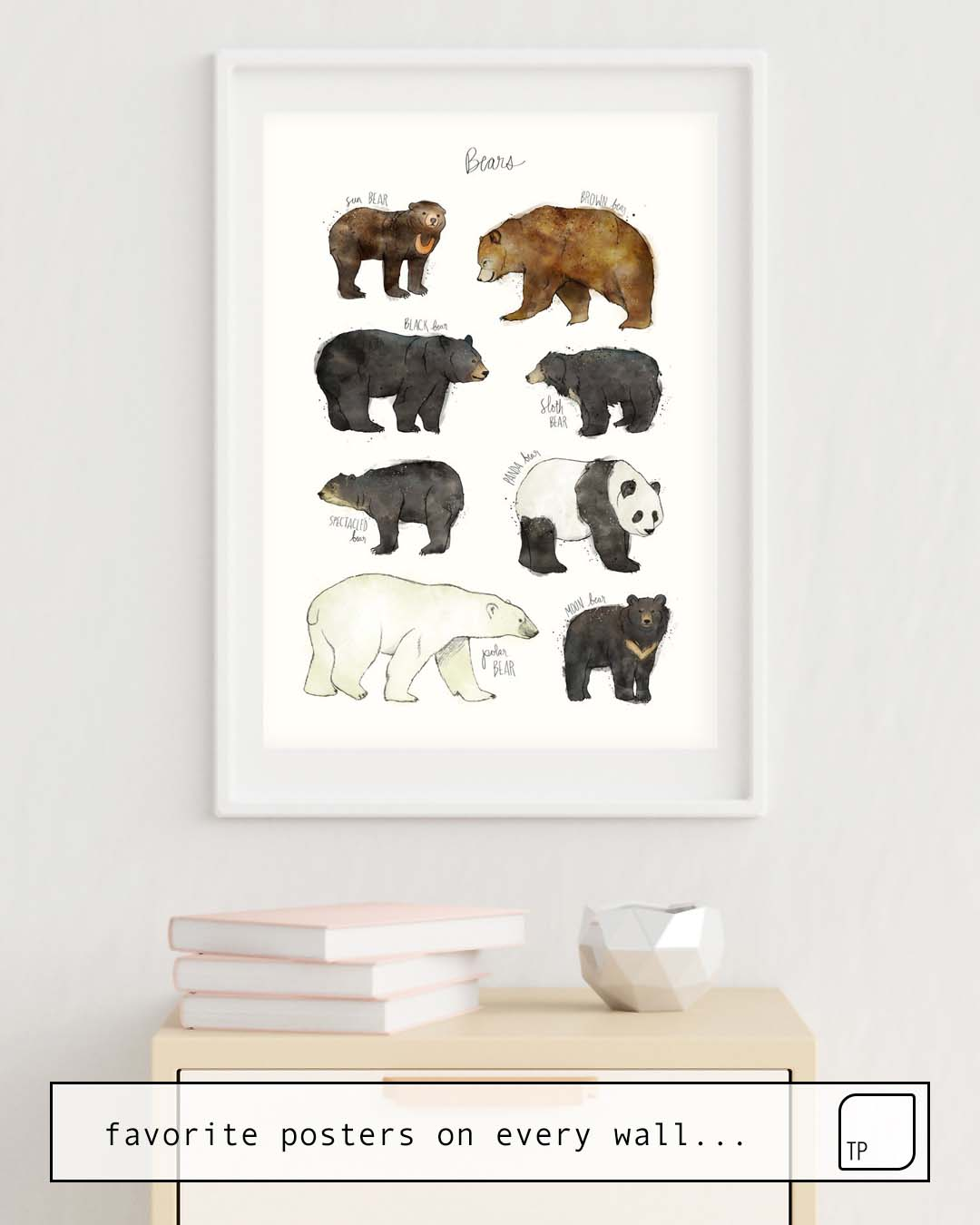 Poster | BEARS by Amy Hamilton