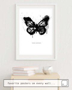 Das Bild zeigt ein Einrichtungsbeispiel mit dem Motiv BLACK MONARCH von Amy Hamilton als Wandbild