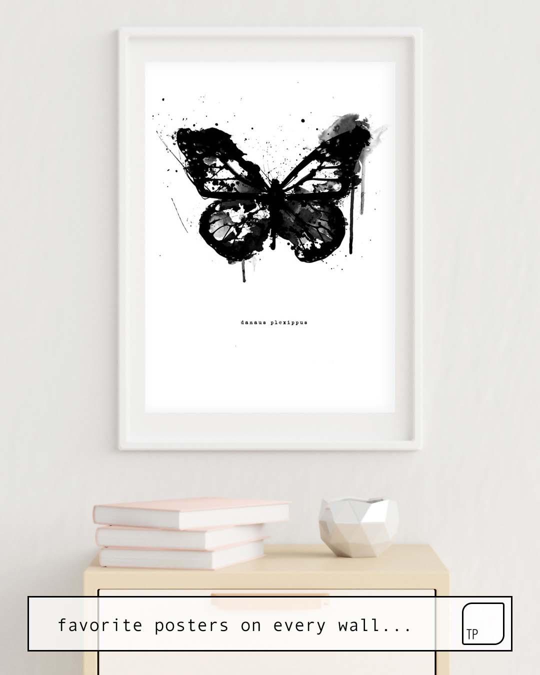 Poster   BLACK MONARCH by Amy Hamilton