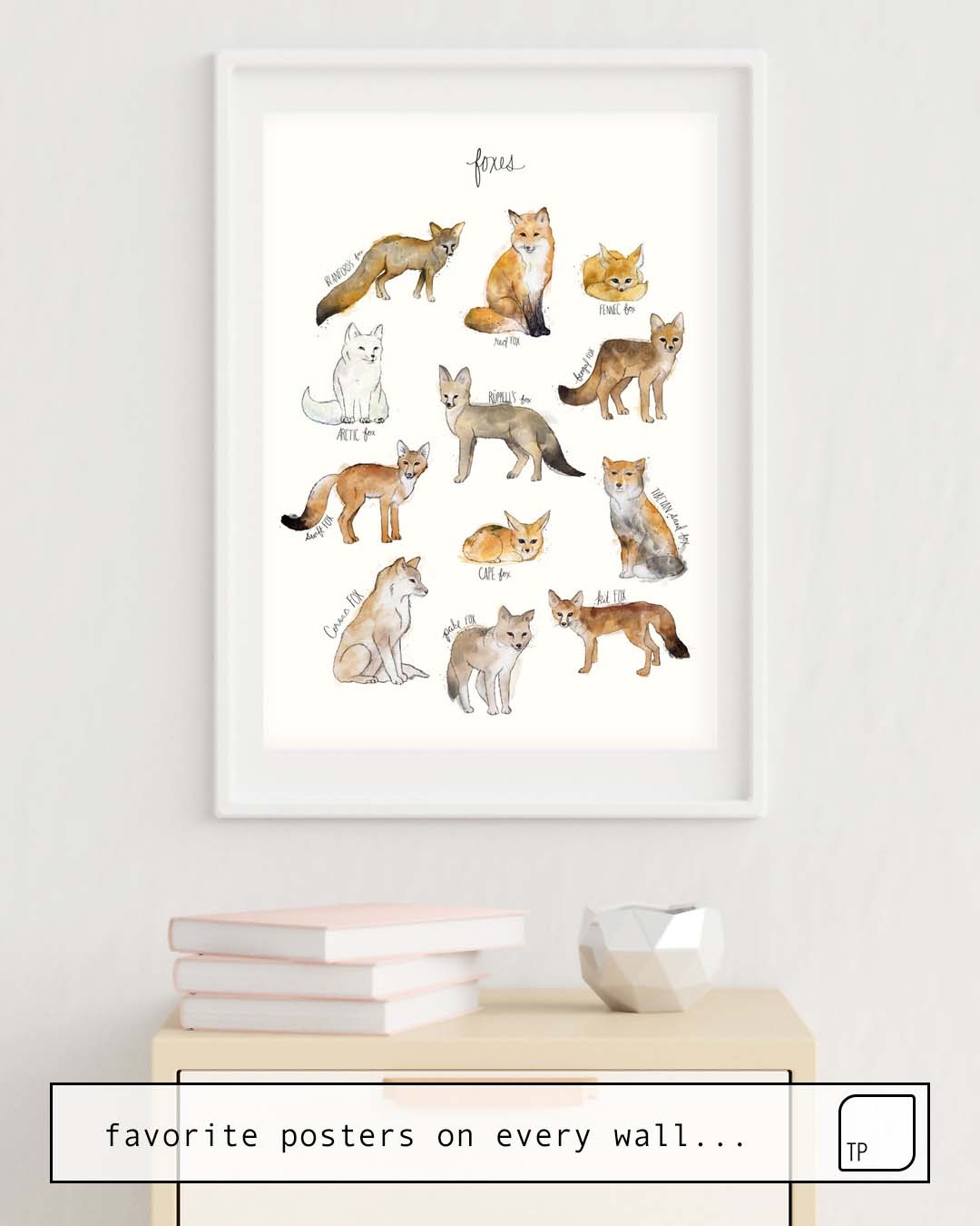 Poster | FOXES by Amy Hamilton