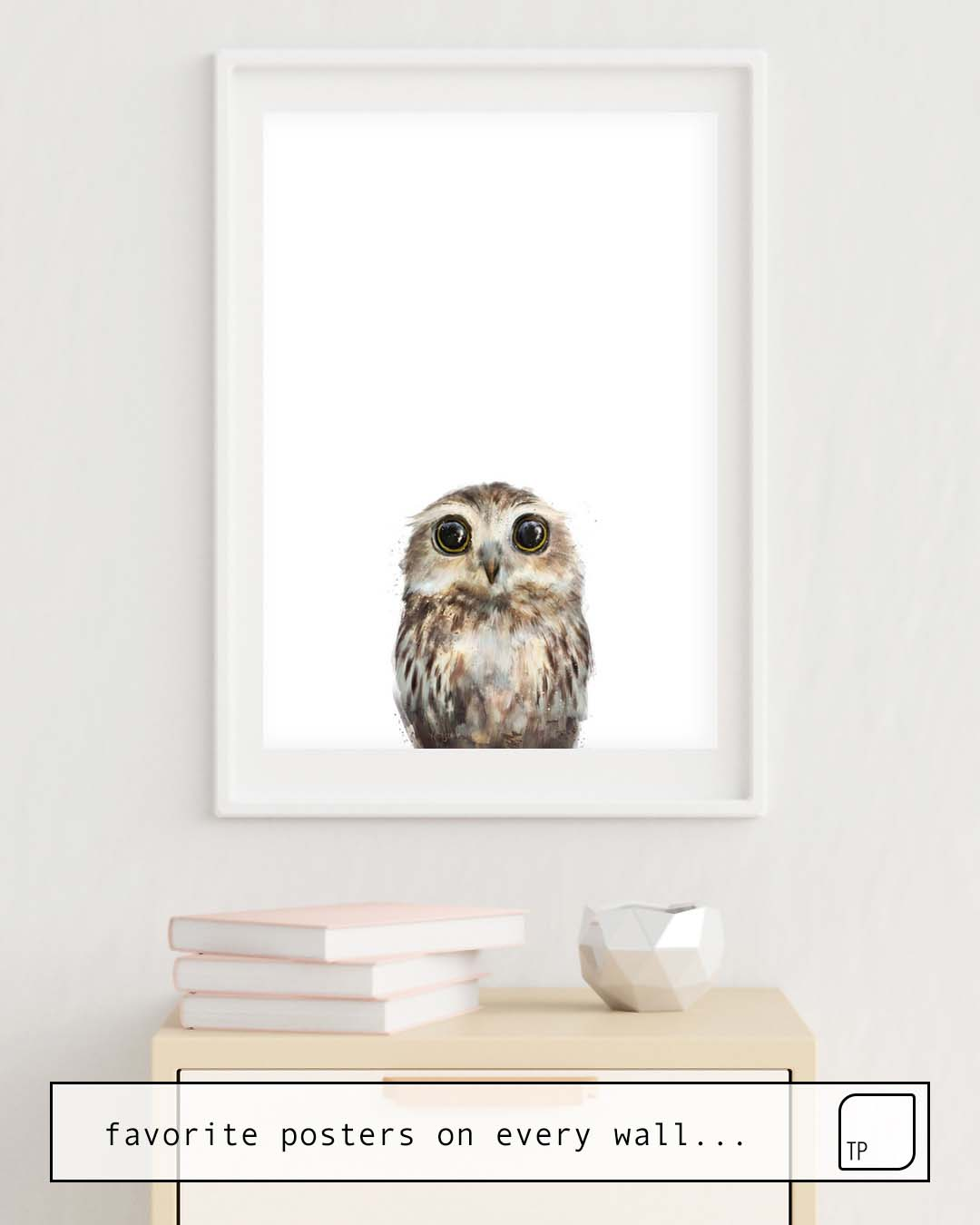 Poster | LITTLE OWL by Amy Hamilton