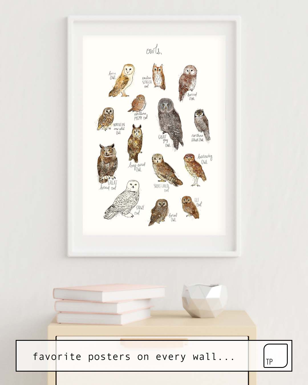 Poster | OWLS by Amy Hamilton