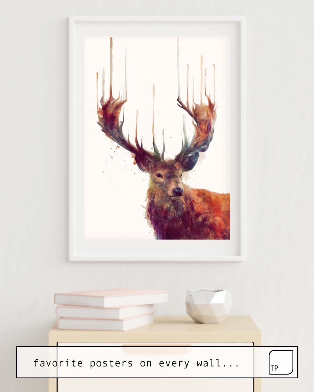 Poster | RED DEER // STAG von Amy Hamilton