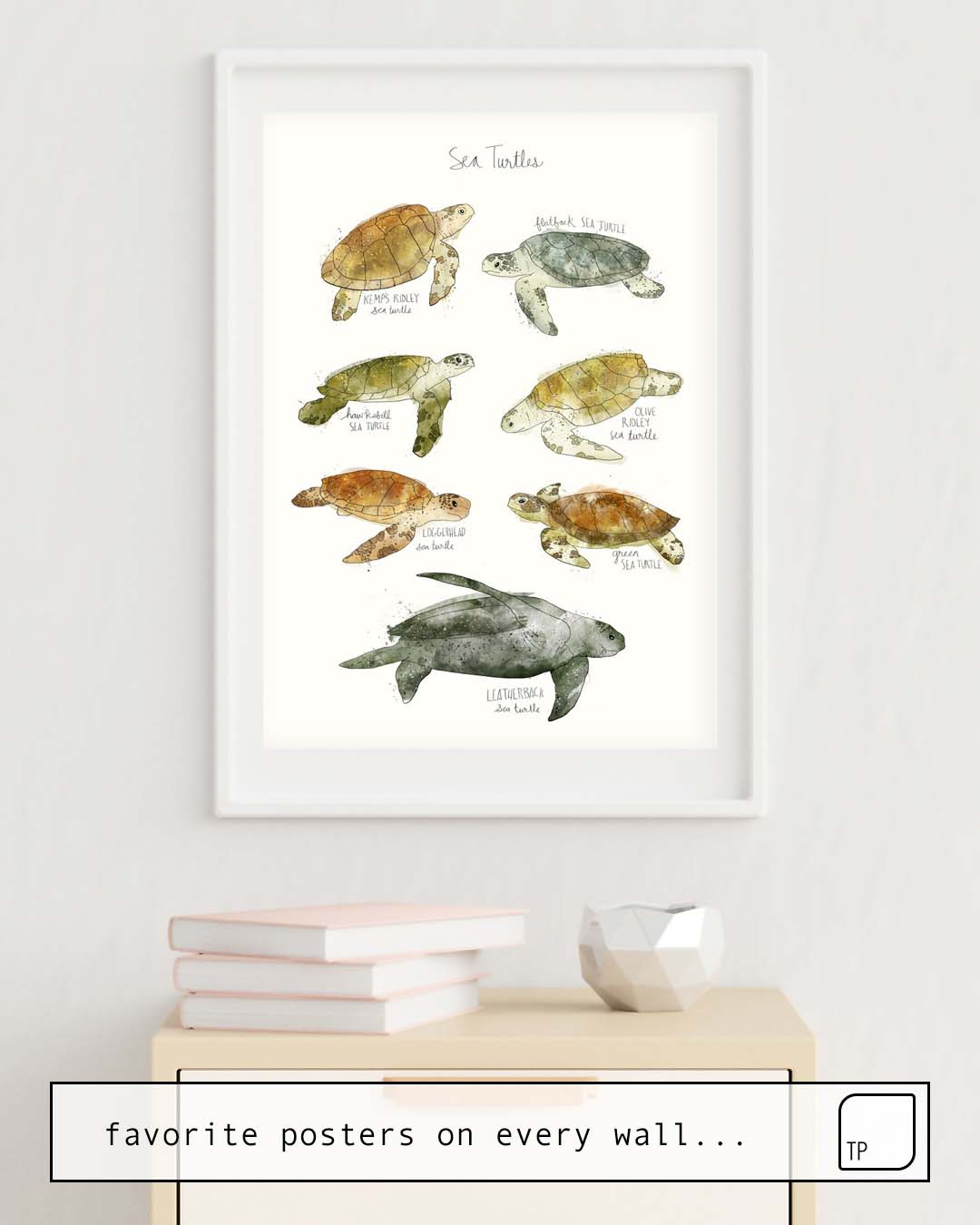 Poster | SEA TURTLES by Amy Hamilton