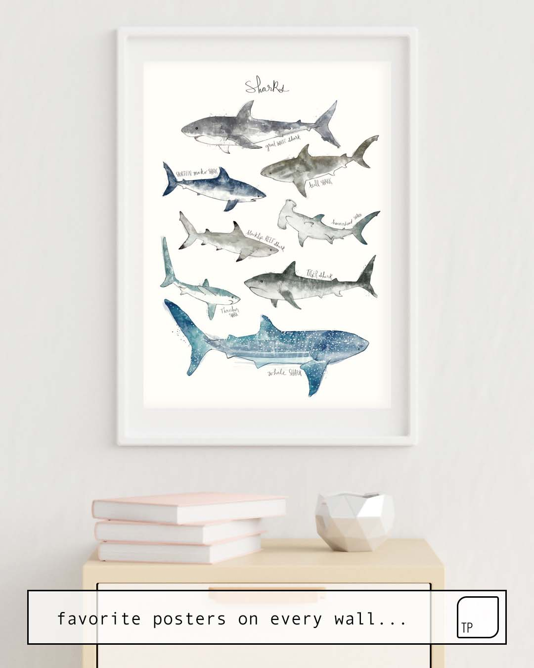 Poster | SHARKS by Amy Hamilton