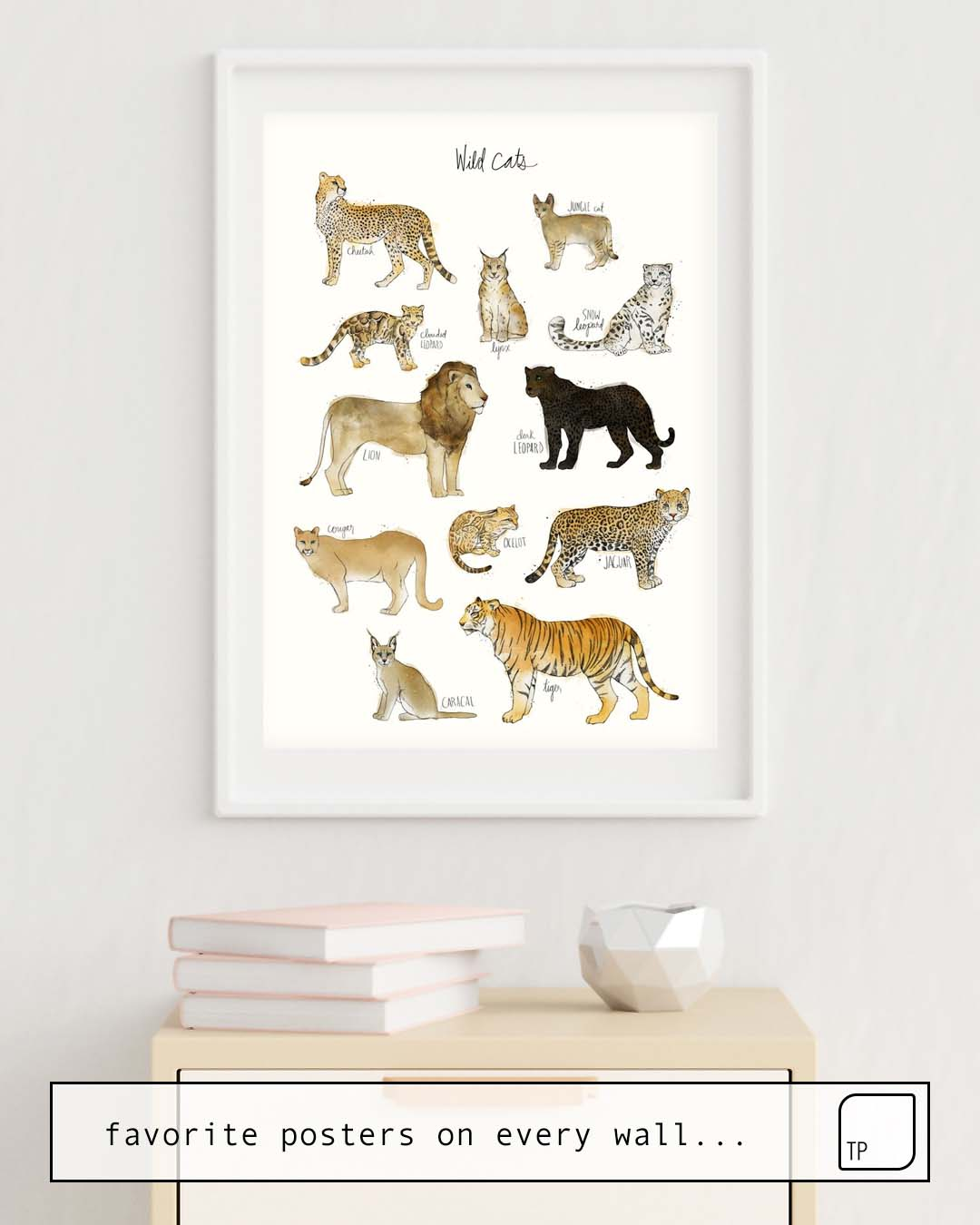 Poster | WILD CATS by Amy Hamilton