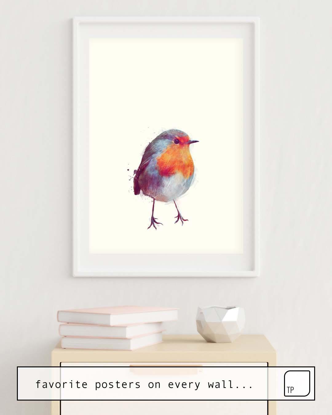 Poster | WINTER ROBIN von Amy Hamilton