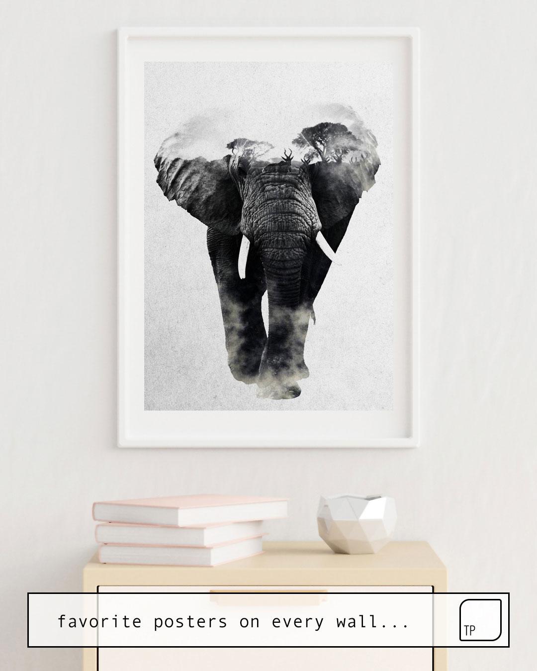 Cartel | ELEPHANT de Andreas Lie