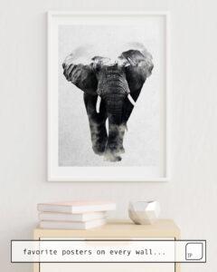 La photo montre un exemple d'ameublement avec le motif ELEPHANT par Andreas Lie comme peinture murale