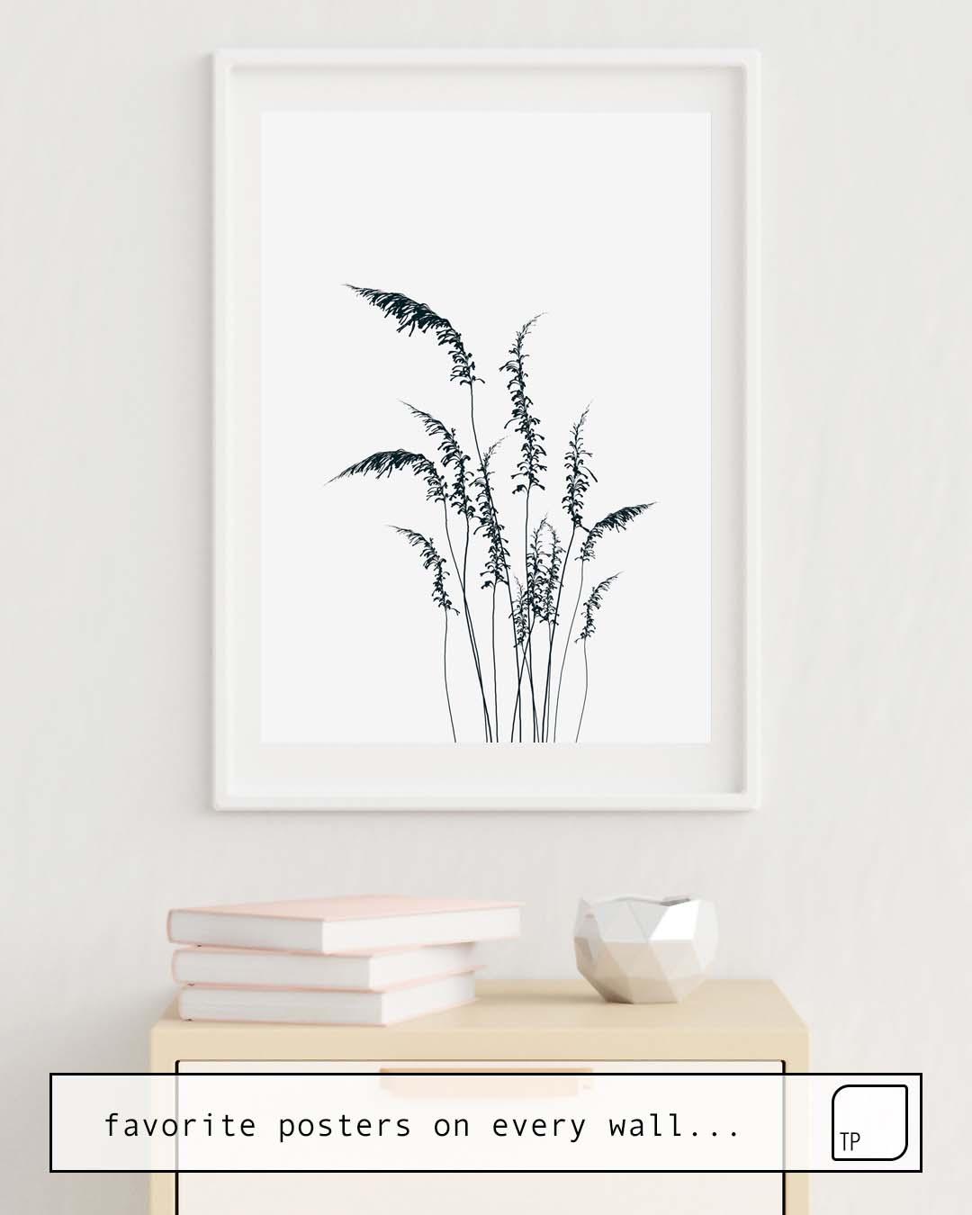 Poster | WILD GRASSES von Andreas12