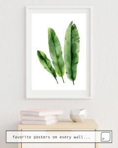 La photo montre un exemple d'ameublement avec le motif BANANA LEAVES par Art by ASolo comme peinture murale