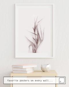 La foto muestra un ejemplo de decoración con el motivo DRIED GRASS SEDGE. por Art by ASolo como un mural