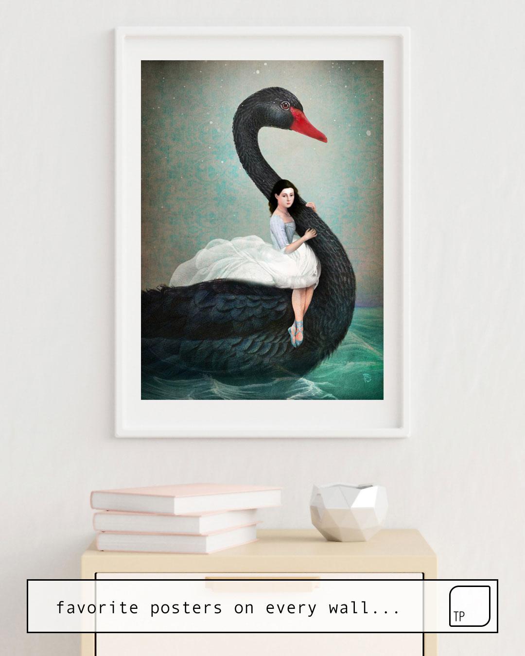 Poster   BLACK SWAN von Christian Schloe